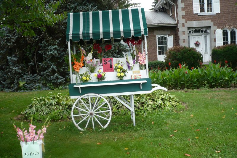 Flx flowers cart