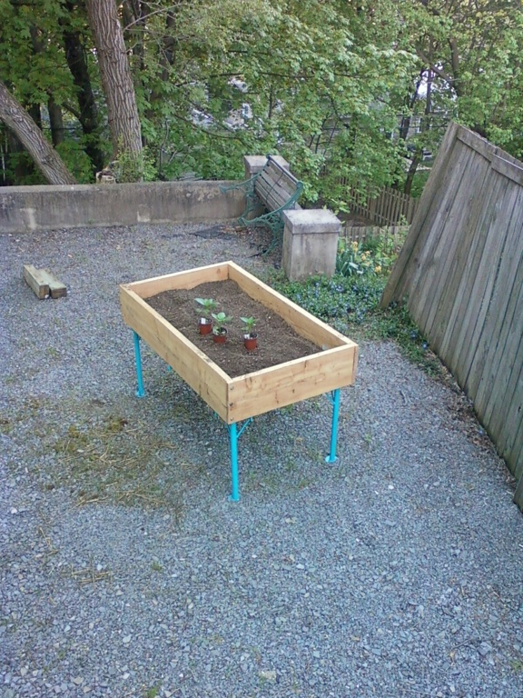 Garden box V 3 plants
