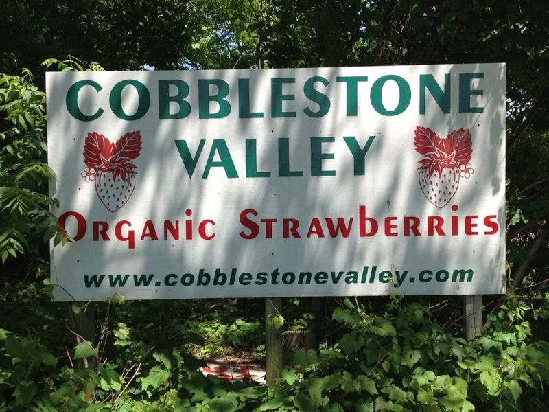 Strawberries cobblestone sign