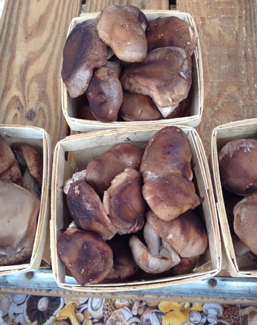 Fayetteville farmers mkt fruit of the funghi shiitakes