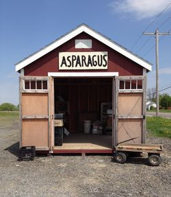Asparagus stand tim's