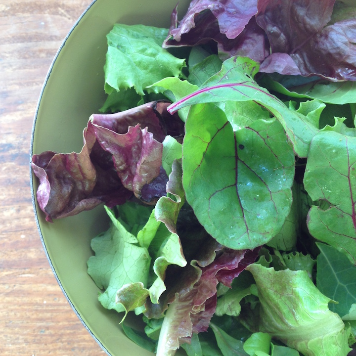 Brady Faith Farm salad