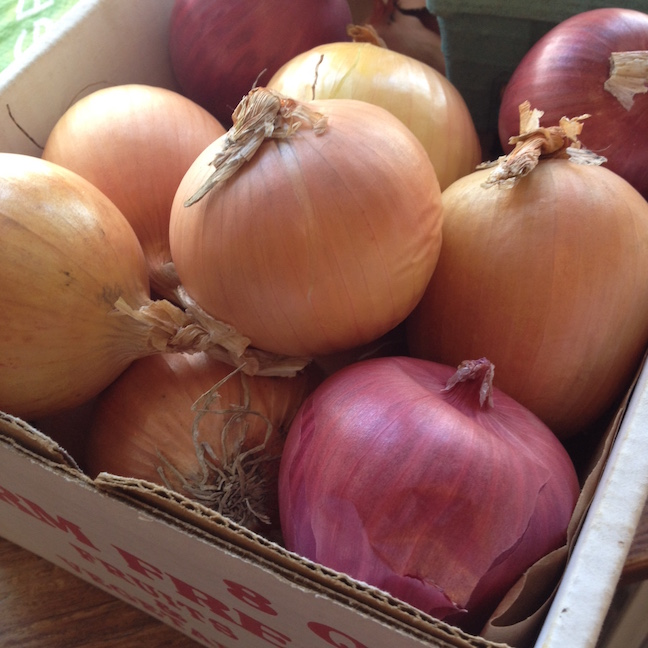 CSA cooking onions galore