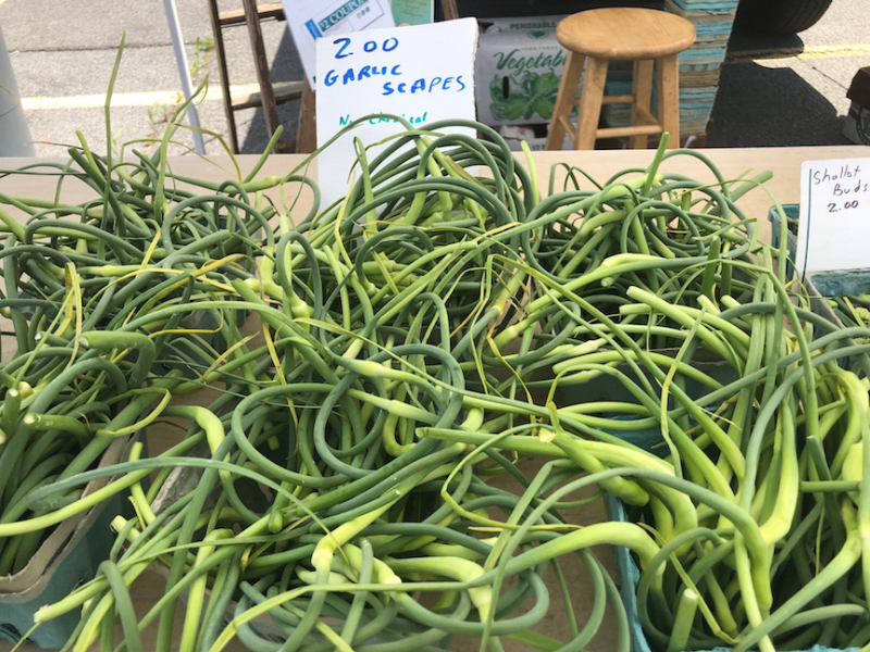 Garlic scapes market