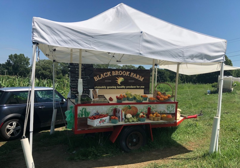 Black brook organic stand